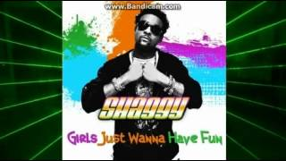 Watch Shaggy Girls Just Wanna Have Fun video