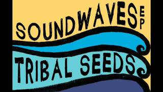 Tribal Seeds In Your Eyes