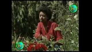 "Bezawork Asfaw - Simih Man Yibalal ""ስምህ ማን ይባላል"" (Amharic)"