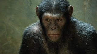 Rise of the Planet of the Apes - DAWN OF THE PLANET OF THE APES Updates - AMC Movie News