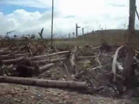 Typhoon Bopha (Pablo) damage in Cateel, Davao Oriental (Mindanao Island), Philippines (Part 1)