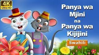 Panya wa Mjini na Panya wa Kijijini  Hadithi za Kiswahili   Katuni za Kiswahili  Swahili Fairy Tales