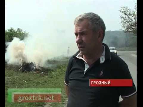 Студенты техникума провели субботник в Грозном Чечня.