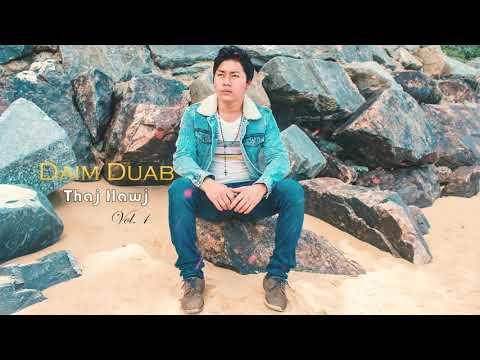 Thaj Hawj - Daim Duab (Official Audio + New Song + Album 1) thumbnail