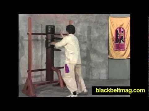 Kung Fu Techniques Video: Wooden Dummy Wing Chun Kung Fu Training With Grandmaster William Cheung Image 1
