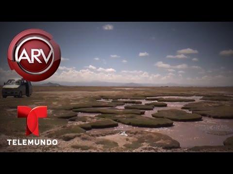 VIDEO: DIABLO VIVE ATRAPADO EN LAGUNA DE BOLIVIA, SEGÚN VECINOS