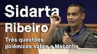 Maconha faz bem? Devemos legalizar? - Prof. Dr. Sidarta Ribeiro - Legalização e descriminalização
