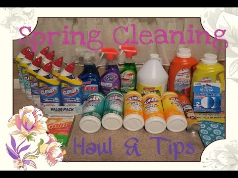 Target & Dollar Tree Haul   SPRING TIME CLEANING TIPS & PRODUCT REVIEW - Sharron's Take