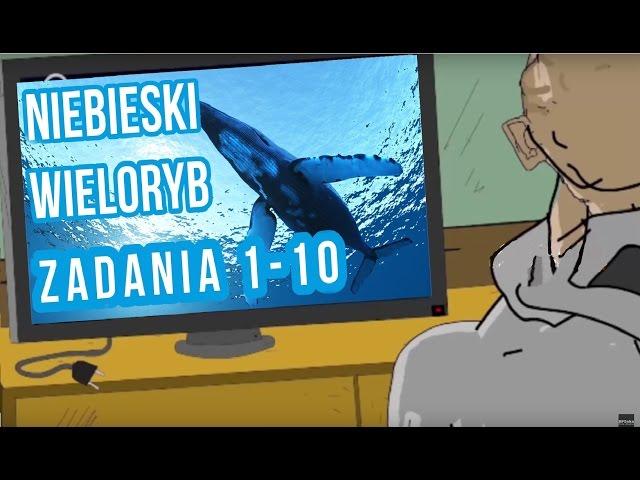 BLOK EKIPA - NIEBIESKI WIELORYB