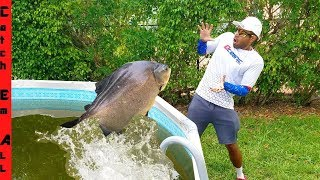 FLYING FISH CATCH while Trying to ESCAPE by JUMPING OUT of POOL!