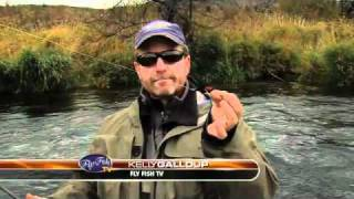 STEELHEAD FISHING DESCHUTES WITH KELLY GALLOUP