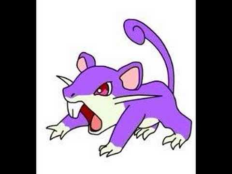 Rattata Likes Cheese