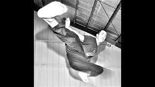 Alameda Martial Arts: