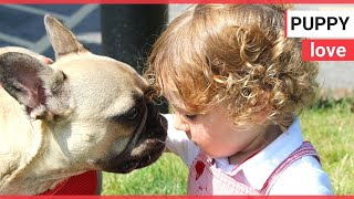 Parents thank doctor who saved boy's life - by saving his dog | SWNS TV