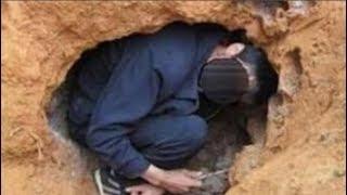 Phát hiện tổ mối gần nhà liền mang cuốc ra đào, người đàn ông hét lớn: 'Báu vật ngàn năm có 1'