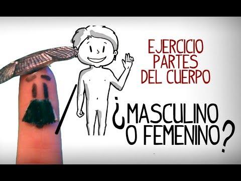 Ejercicio De Las Partes Cuerpo ¿masculino O Femenino?