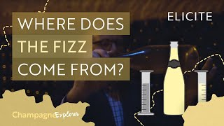 How Is Champagne Made? | The Champagne Explorer Series | #3