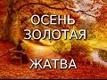 Осень Золотая Праздник урожая и жатвы mp3