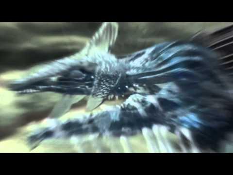 Sonic Adventure DX: Director's Cut - Intro