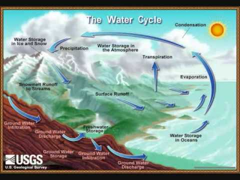 The COOL Water Cycle Song with lyrics. Mar 5, 2010 8:45 PM