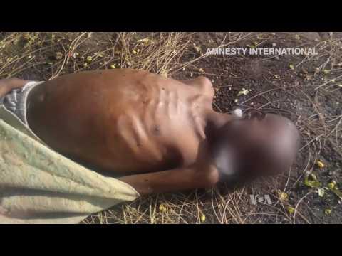 Amnesty: Children Died in Nigerian Military Detention Center