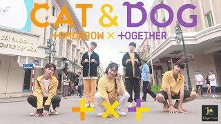 [KPOP IN PUBLIC CHALLENGE] TXT (투모로우바이투게더) 'Cat & Dog' | Dance Cover by Kings Crew from VIETNAM