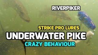Underwater Pike - Strike Pro Lures (video 96)