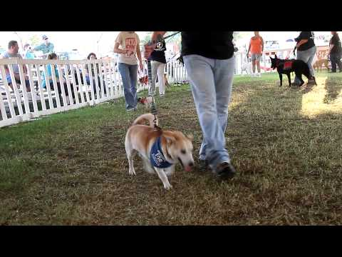 New Leash on Life at the 2012 Wilson County Fair