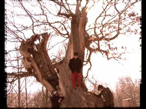 Thumbnail of video The Higher State - 'Song Of The Autumn'