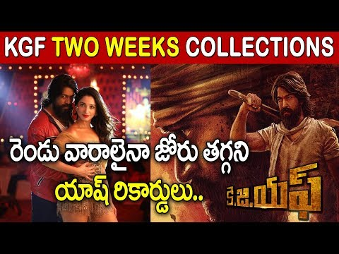 KGF Two Weeks Collections | Rocking Star Yash, Srinidhi Shetty | Box office Worldwide Movie Records