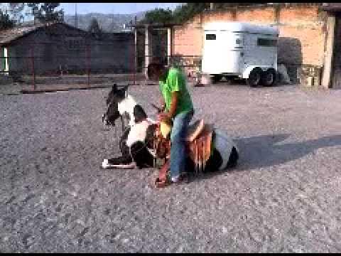 Chichihualco - Mazeton doma a hersheys