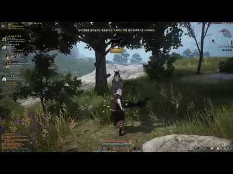 Black Desert Horse Taming Registering and Riding HD