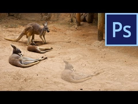 Photoshop CS6: Content-Aware Move Tool