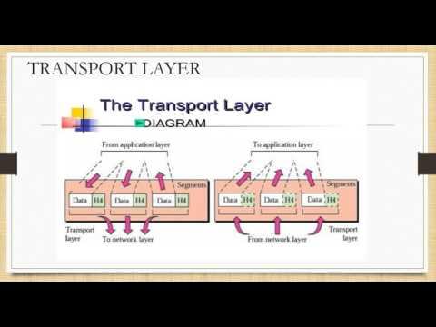 Presentation on OSI Model