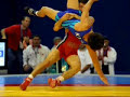 FREESTYLE WRESTLING Image 2