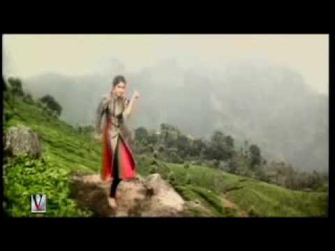 Teri Umeed Tera Intezaar -Deewana