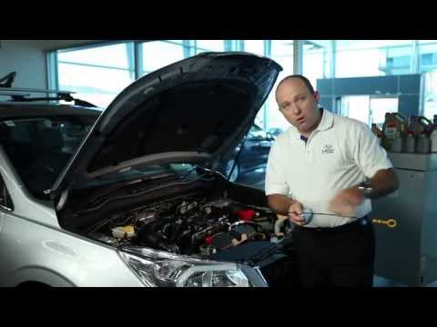 How To Check Your Engine Oil | Official Subaru Australia