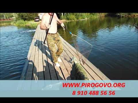 Платная рыбалка в коргашино пирогово