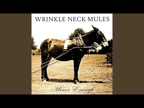 Wrinkle Neck Mules - Wandering Valley Prelude