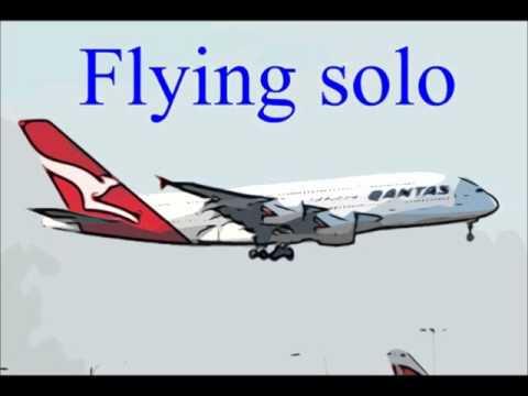 Qantas Airways grounds global fleet due to strikes