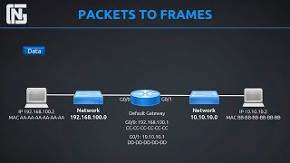 Routers, Switches, Packets and Frames