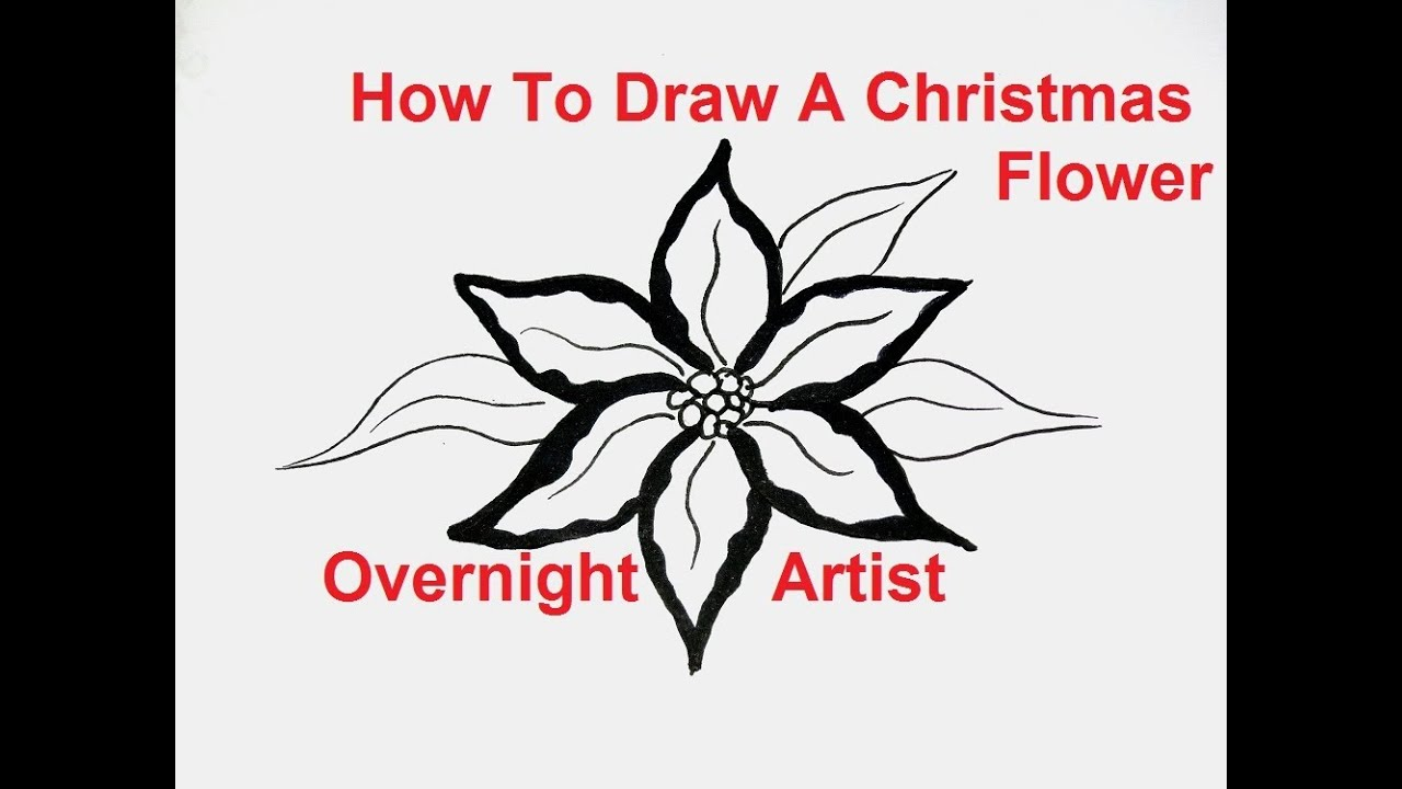 How To Draw A Basket Of Flowers : How to draw flowers a christmas flower