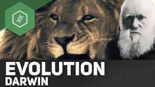 Evolutionstheorie von Charles Darwin  Gehe auf SIM