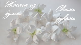 Цветы из бумаги своими руками. Жасмин. Скрапбукинг. Paper flowers