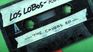 Watch Los Lobos More Than I Can Stand video