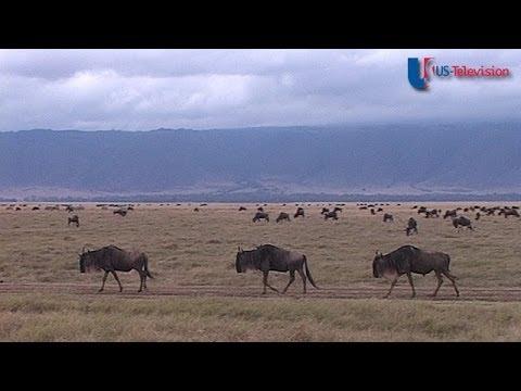 US Television - Tanzania (Tourist Board)