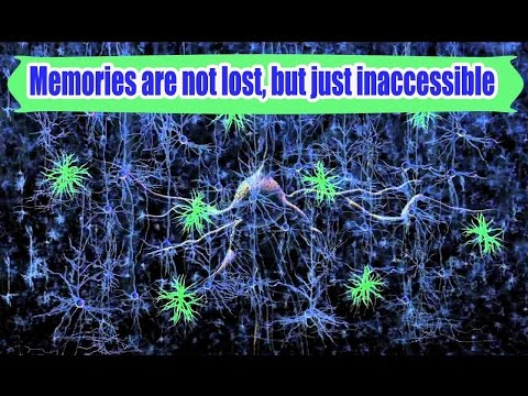 Memories Lost From Amnesia Can Now Be Retrieved by Light.