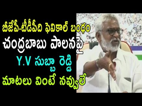 YSRCP MP YV Subba Reddy Funny Satirical Comments On TDP AP Party | BJP Relation | Cinema Politics