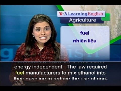 Anh ngữ đặc biệt: Farmers Concerned Over Ethanol Changes (VOA-Ag Rep)