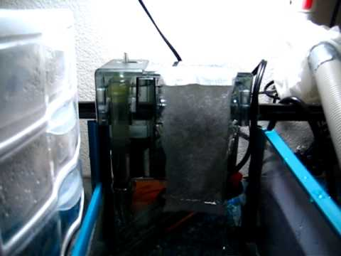 DIY Freshwater wet/dry filter